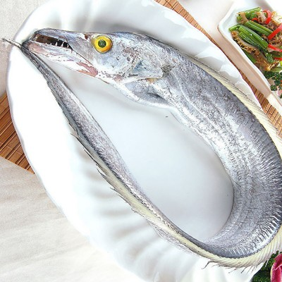 WHOLE RIBBON FISH / STEAK