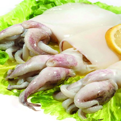 CUTTLEFISH (WHOLE CLEANED)